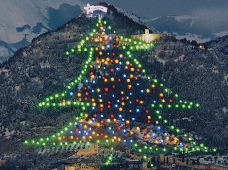 Albero Di Natale 8 Dicembre.Albero Di Natale Piu Grande Del Mondo 8 Dicembre